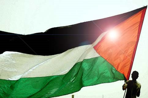 Large Palestinian Flag
