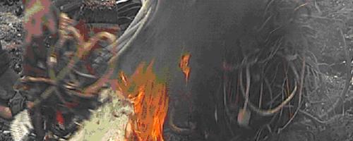 giftiggasbijverbranding